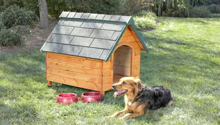 How To Build a Dog House Step By Step Tutorial