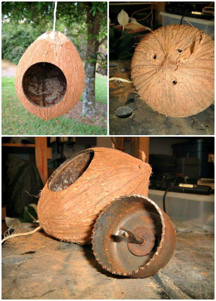 Easy DIY Coconut Birdhouse Tutorial