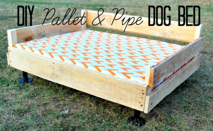 Easy DIY Pallet and Pipe Dog Bed Tutorial