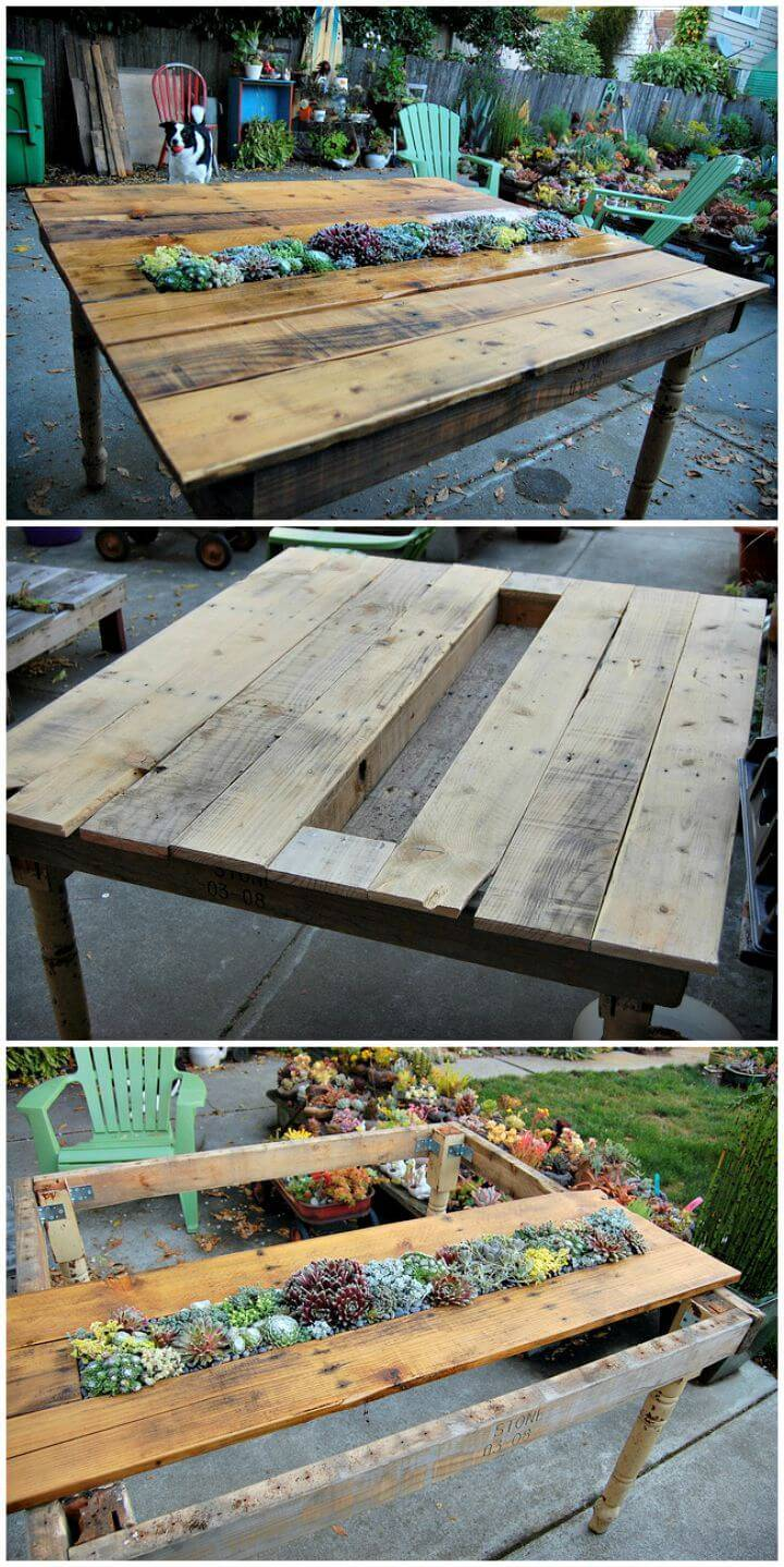 Easy How to DIY Succulent Pallet Table Tutorial