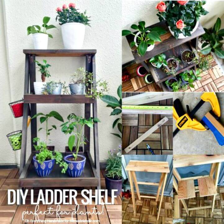 How To Build A Ladder Plant Stand