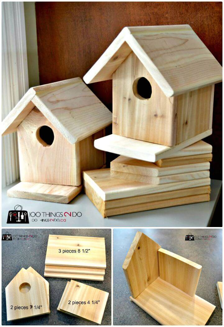 How To Build a Bird House Tutorial