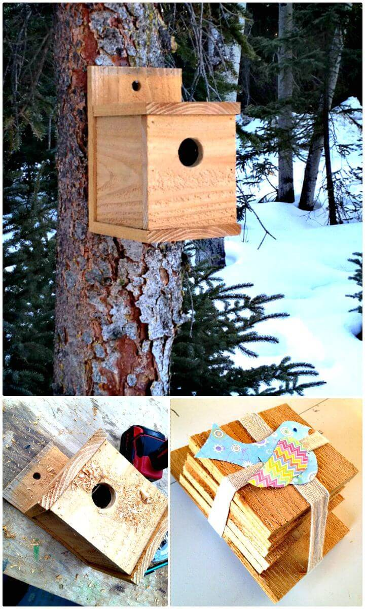 How To Build a Modern Bird House Under $1 Tutorial