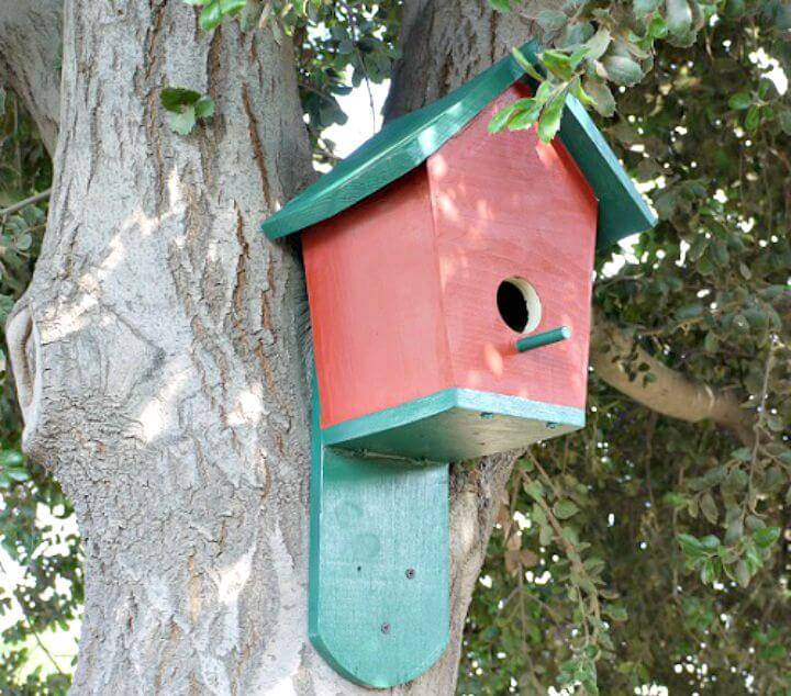 How To Easy DIY Bluebird House Tutorial