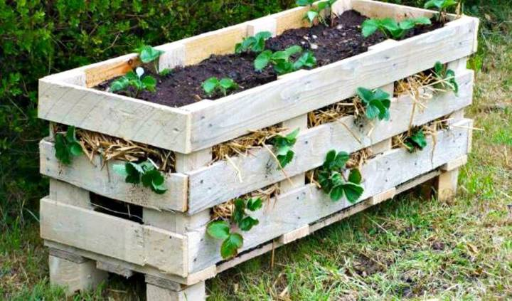 Easy Build a Better Strawberry Pallet Planter - DIY