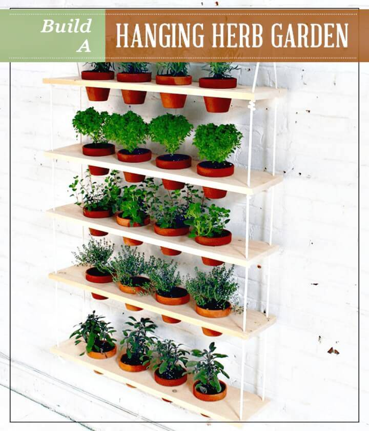 Build A Hanging Herb Garden - DIY