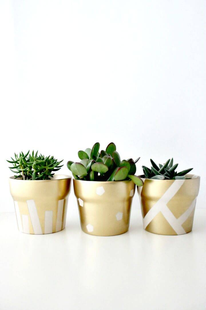 Adorable DIY Gilded Succulent Pots For Spring