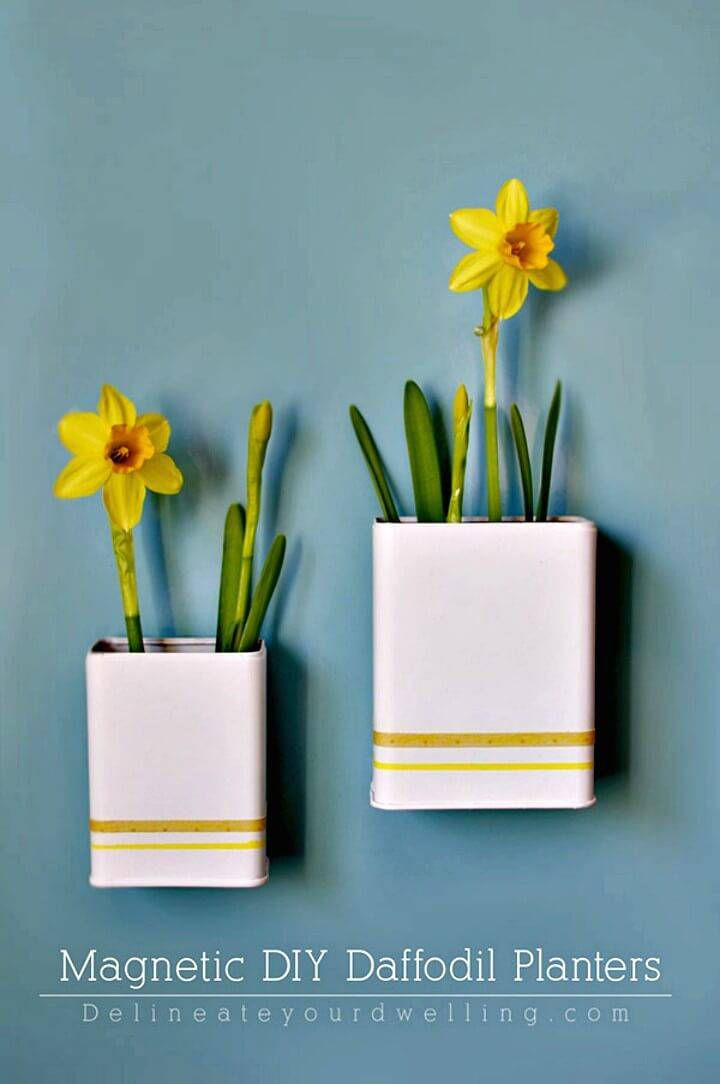 How to DIY Magnetic DIY Daffodil Planters
