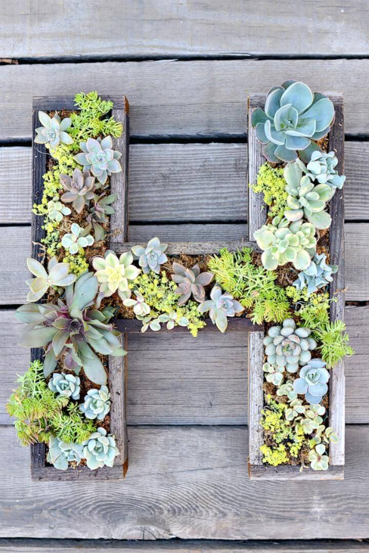 How To Make Wall-Mounted Succulent Letter - DIY