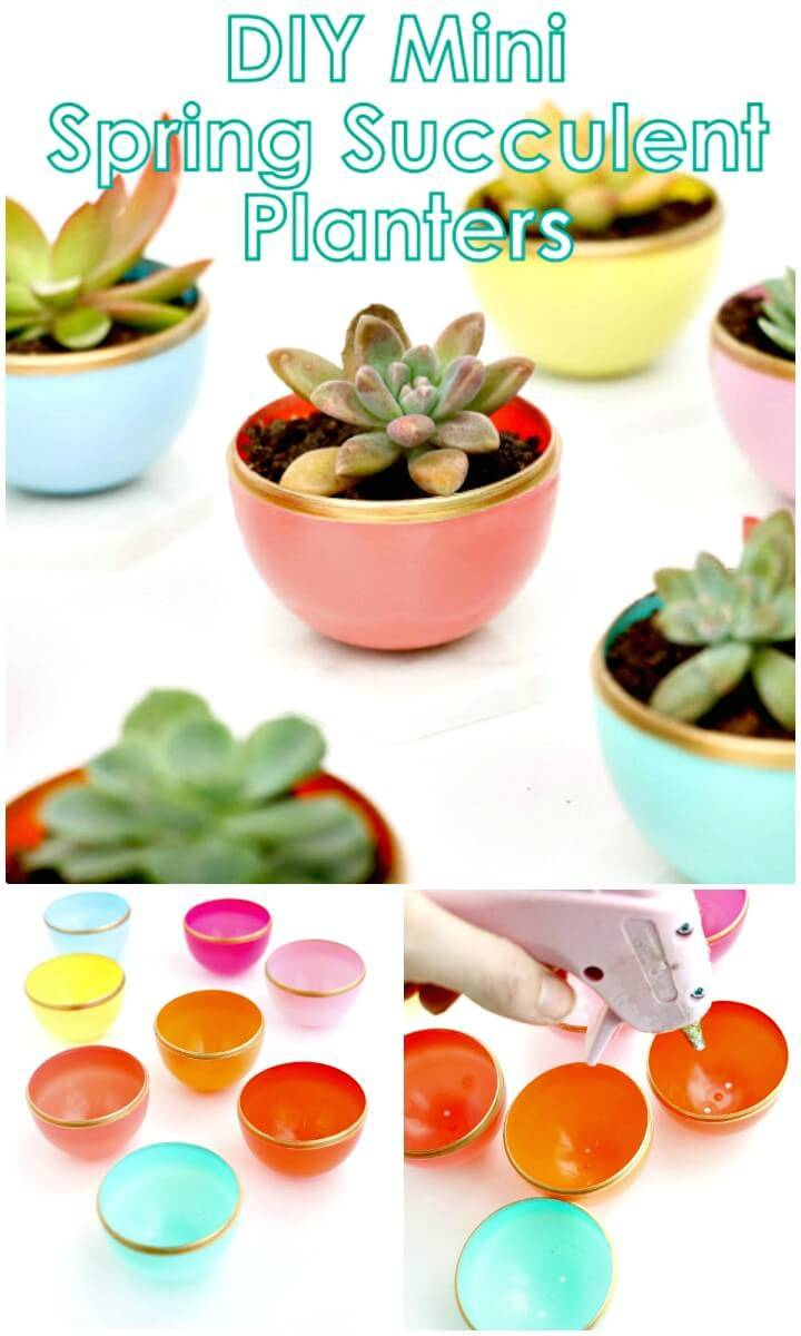 Quick How to Make Your Own Mini Spring Succulent Planter
