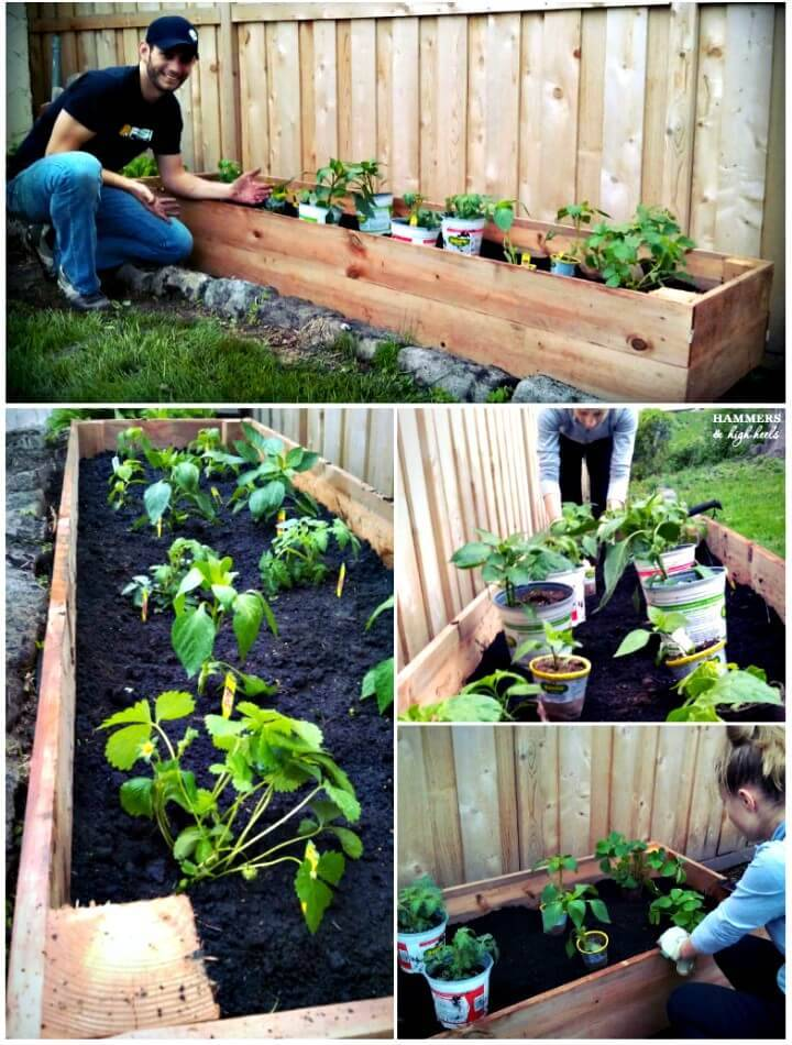 Make Your Own Raised Garden Beds - DIY