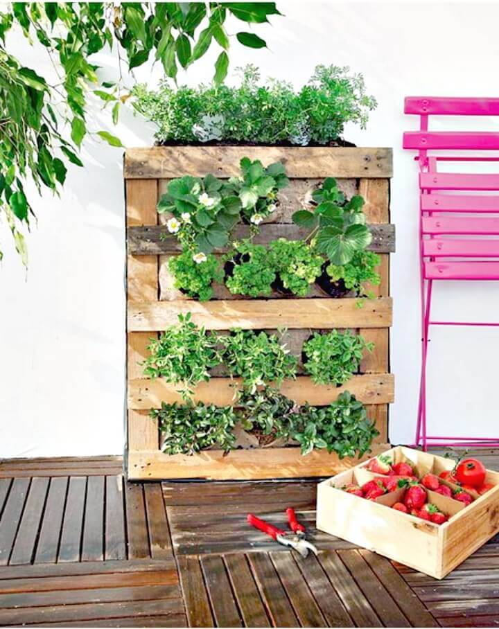 DIY Pallet Vertical Garden on Low-budget