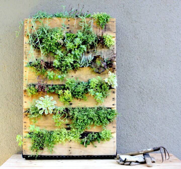 Create a Recycled Pallet Vertical Garden - DIY
