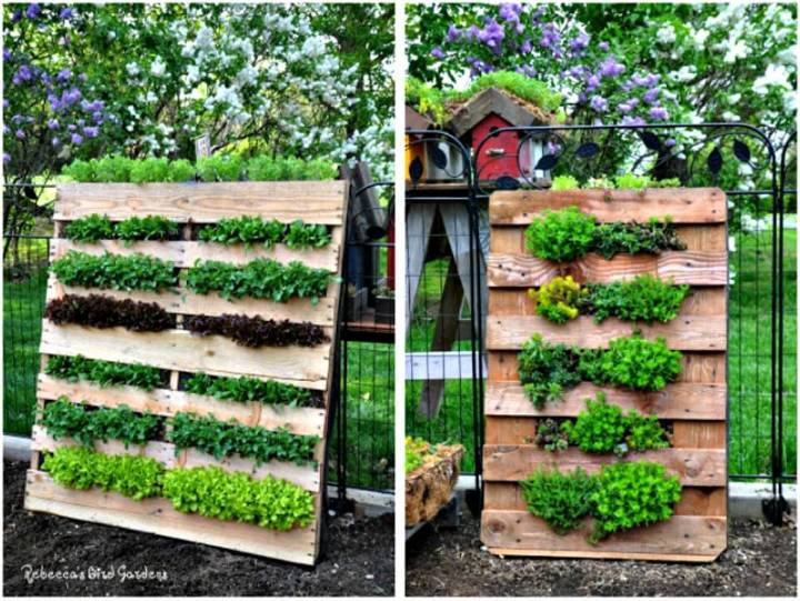 How to DIY Vertical Pallet Garden