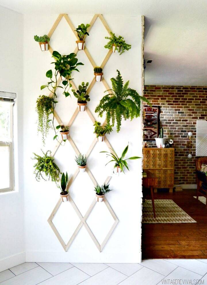 Create Wood and Leather Trellis Plant