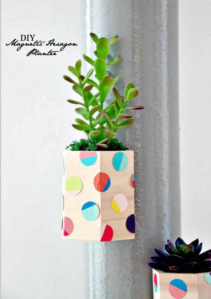 How to Make Magnetic Hexagon Planters