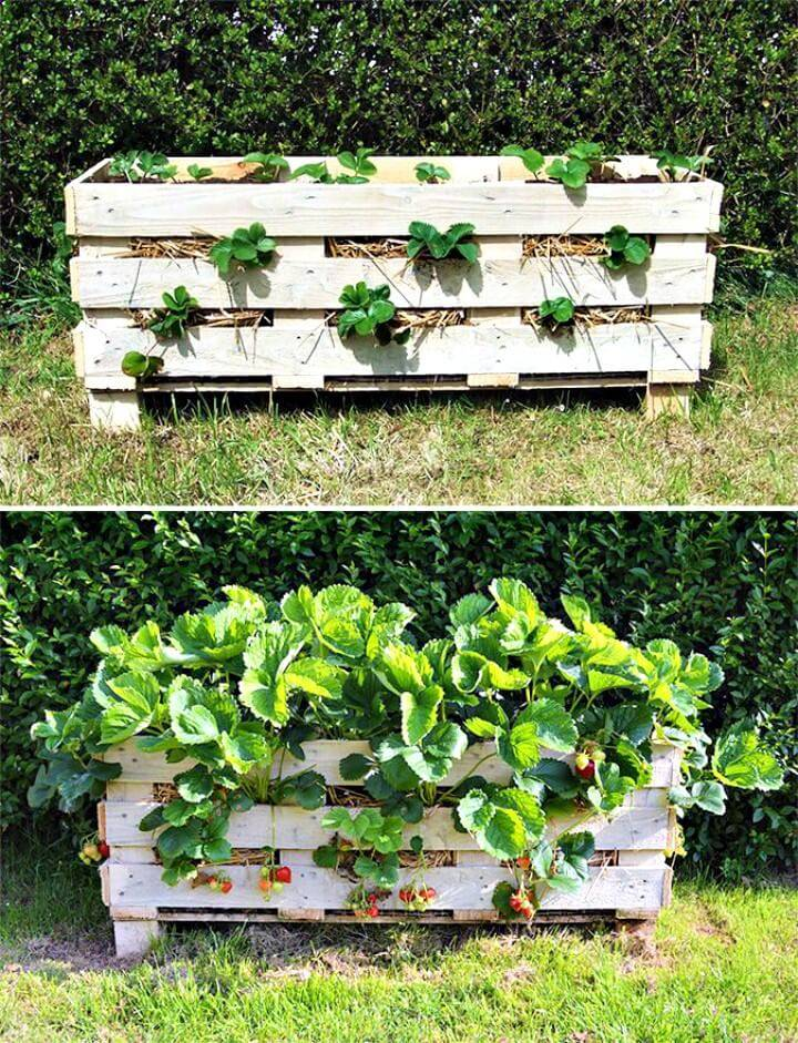 DIY Strawberry Pallet Planter - Pallet Garden Projects