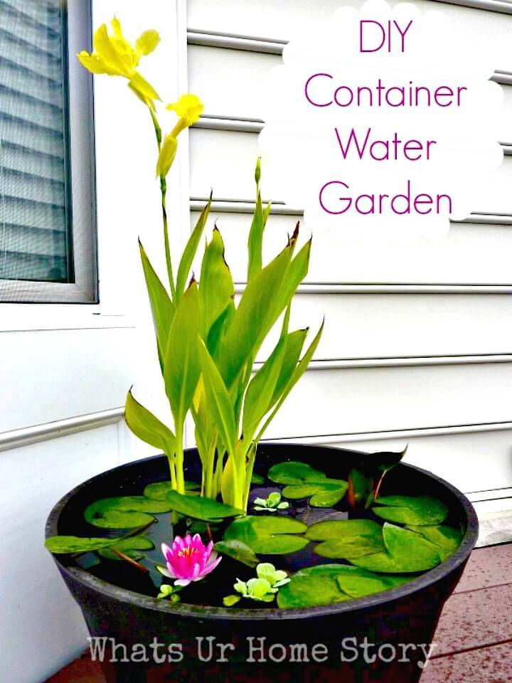How to DIY Container Water Garden
