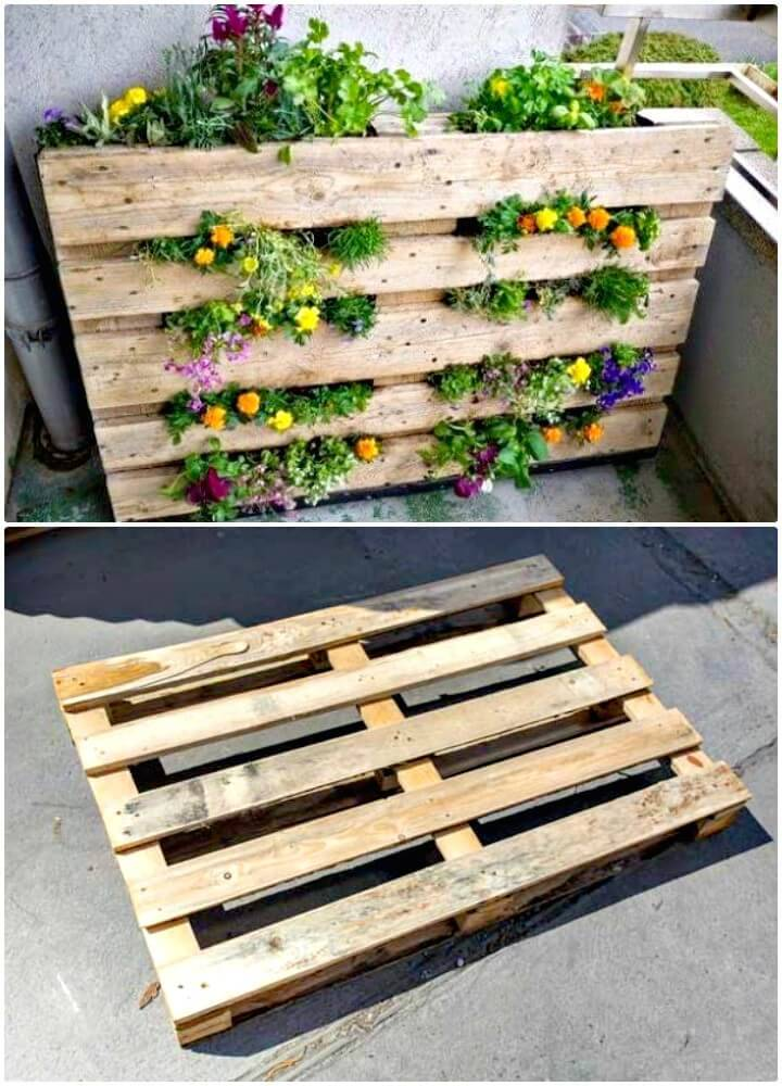 Build a Pallet Garden - DIY Pallet Garden Projects