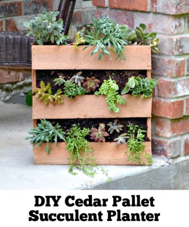 How To Create Cedar Pallet Succulent Planter - DIY