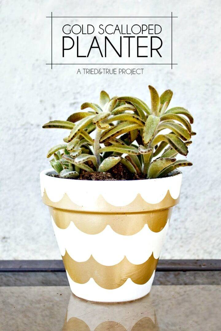 Bright How to DIY Gold Scalloped Planter Step By Step Tutorial