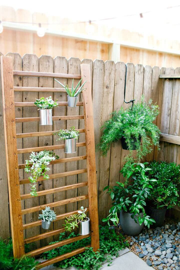 DIY Outdoor Succulent Wall - Backyard Ideas