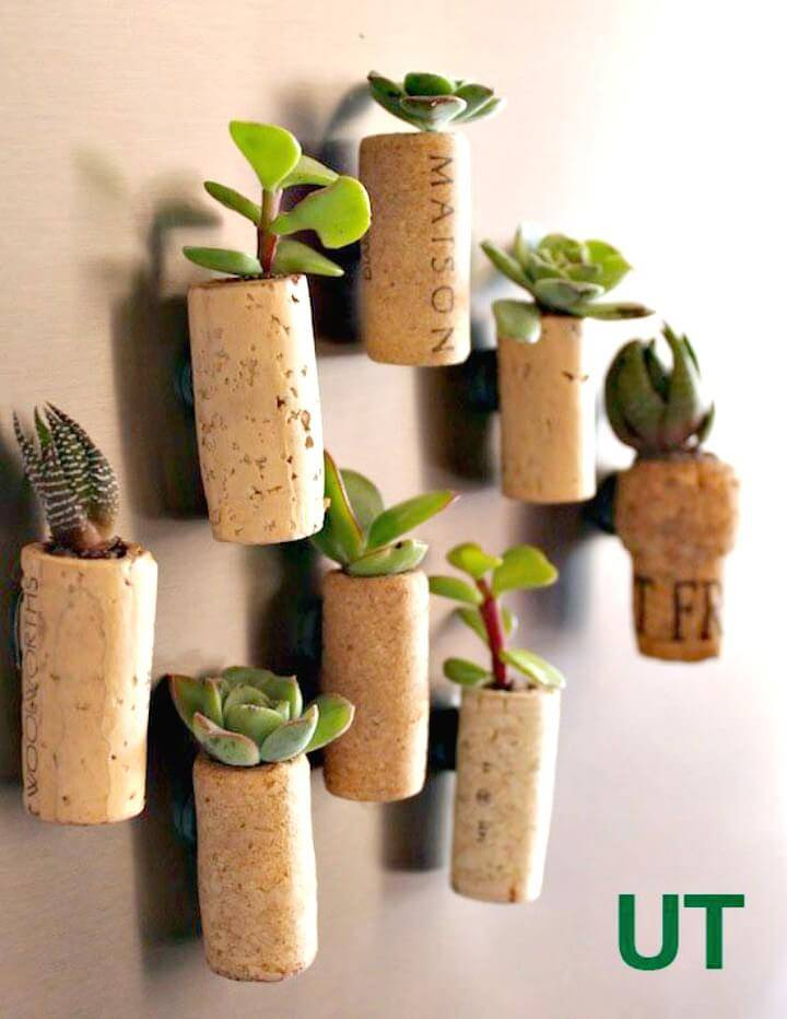 Easy and Adorable Magnetic Cork Planters