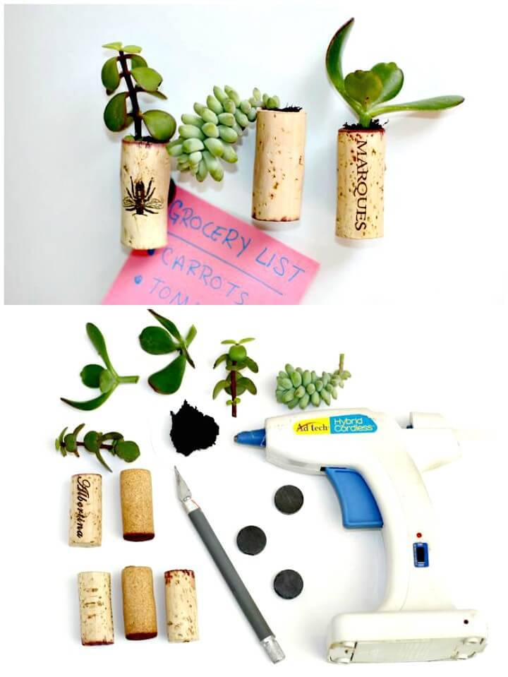 How To DIY Tiny Succulent Planter Magnets