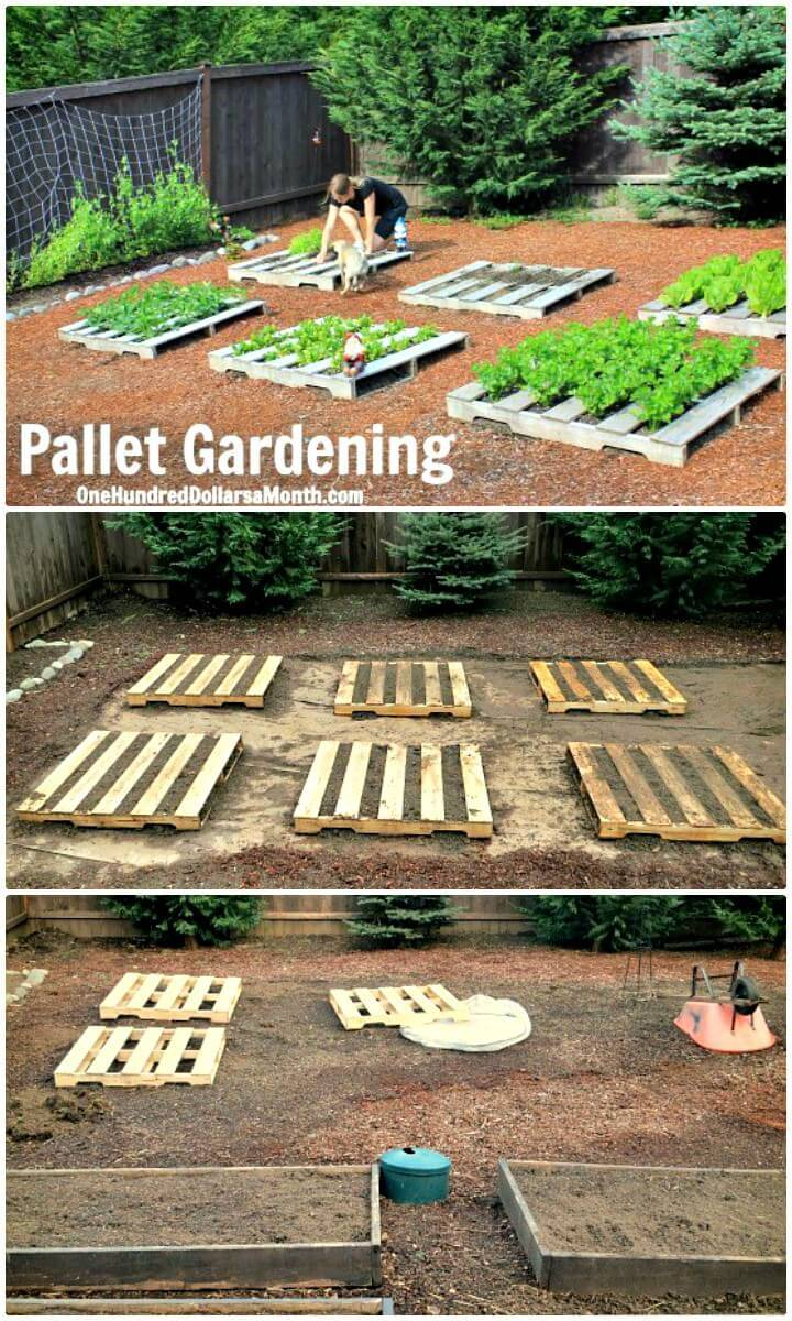 How to Creating a Pallet Garden - DIY Pallet Garden Project