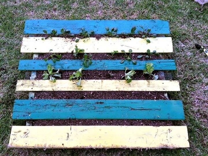 Build a Pallet Garden for Thirty Bucks -  Pallet Garden Projects