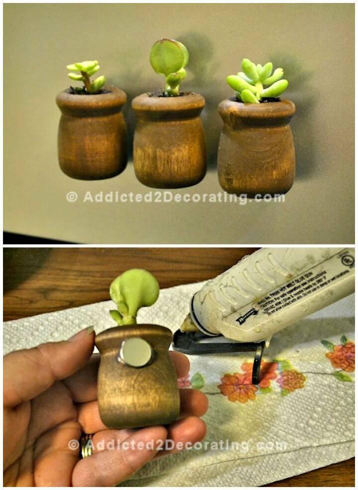 How to Make Miniature Succulent Planter Refrigerator Magnets Tutorial