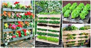 30 DIY Pallet Garden Projects to Update Your Gardens