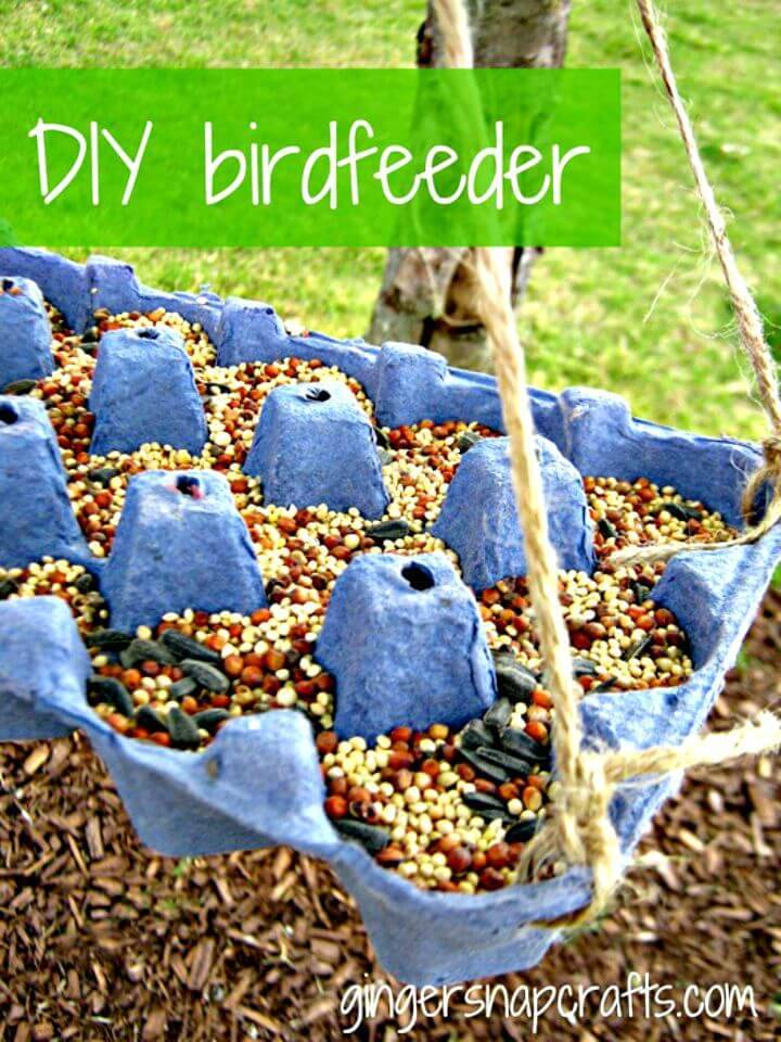 DIY Bird Feeder for Your Little Friends in This Summer