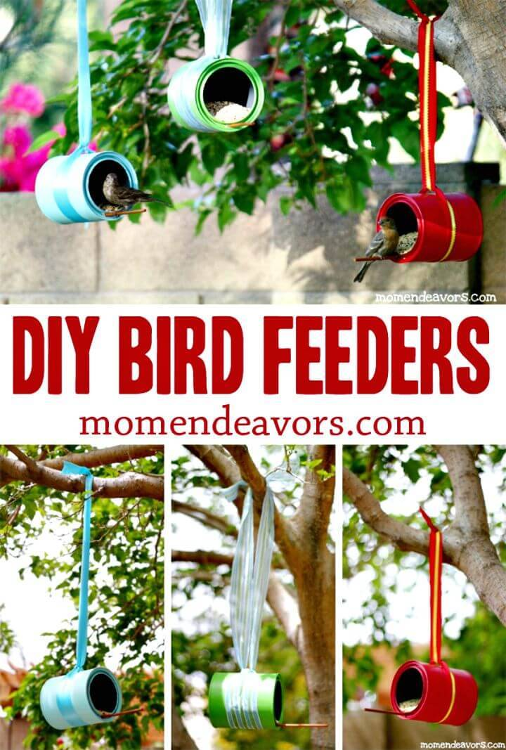 DIY Bird Feeders - A Simple Summer Craft