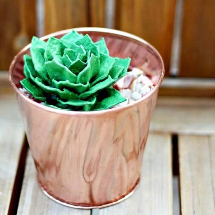 How to DIY Egg Carton Succulent