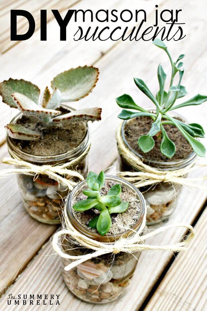 How to DIY Mason Jar Succulents