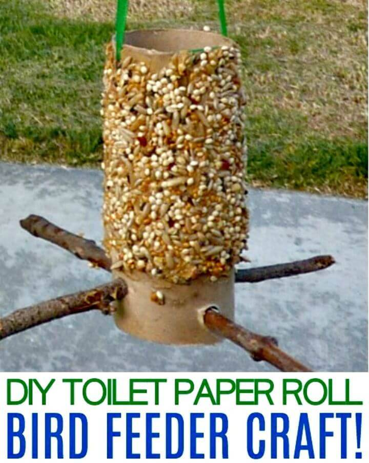 Simple DIY Toilet Paper Roll Bird Feeder Craft