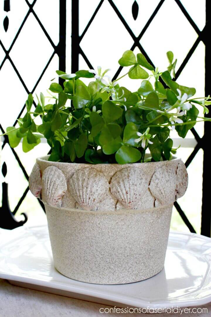 DIY Scallop Shell Terra Cotta Pot - Indoor Garden Ideas