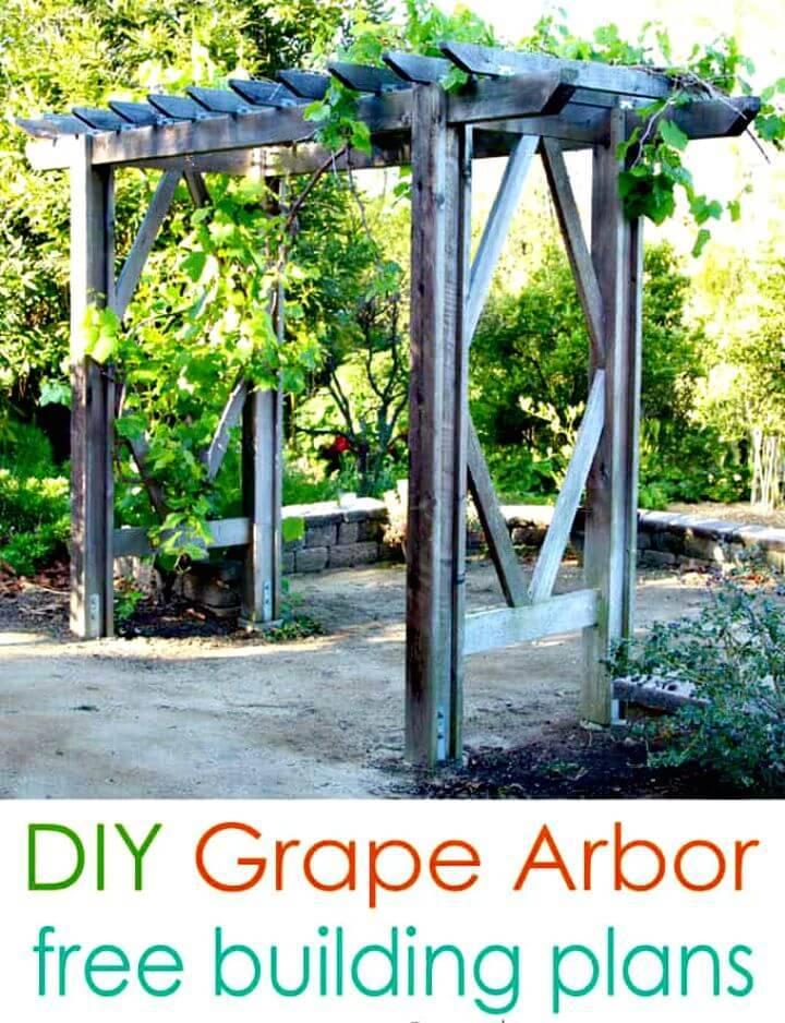 Make Your Own Grape Arbor - DIY Garden Ideas