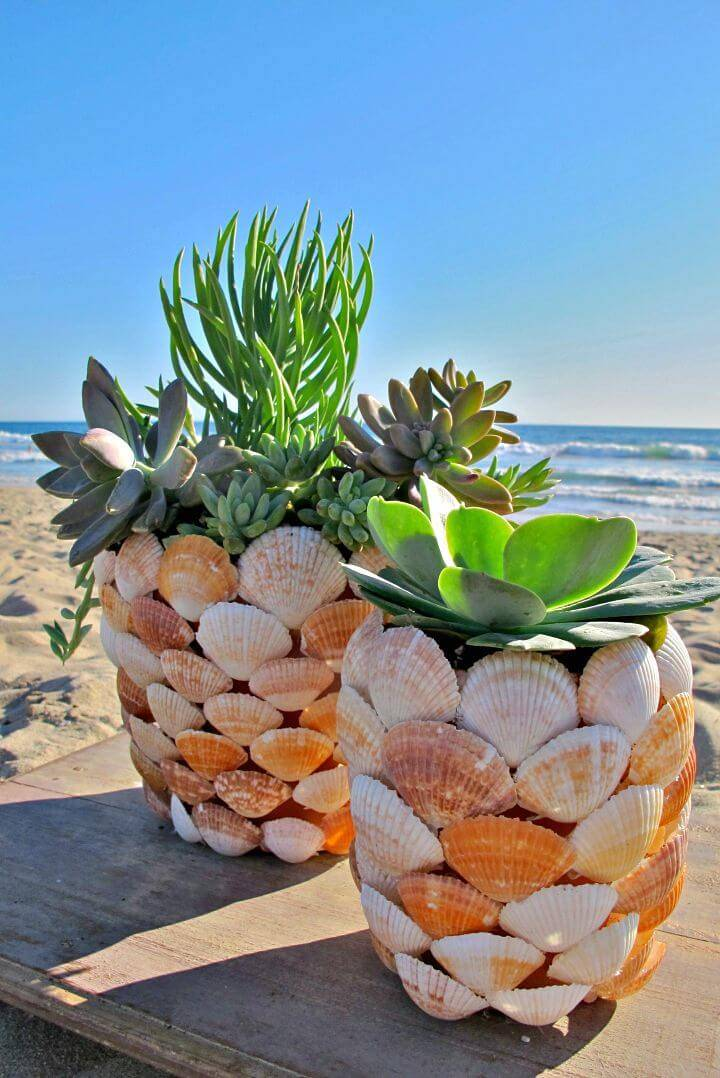 Adorable DIY Beachy Shell Planter