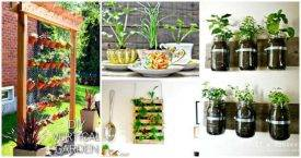 70 Inexpensive DIY Herb Garden Ideas You Need To DIY Now,DIY Garden, DIY Indoor Herb Garden, DIY Planter Ideas, DIY Projects, DIY Home Decor Ideas, easy DIY Crafts
