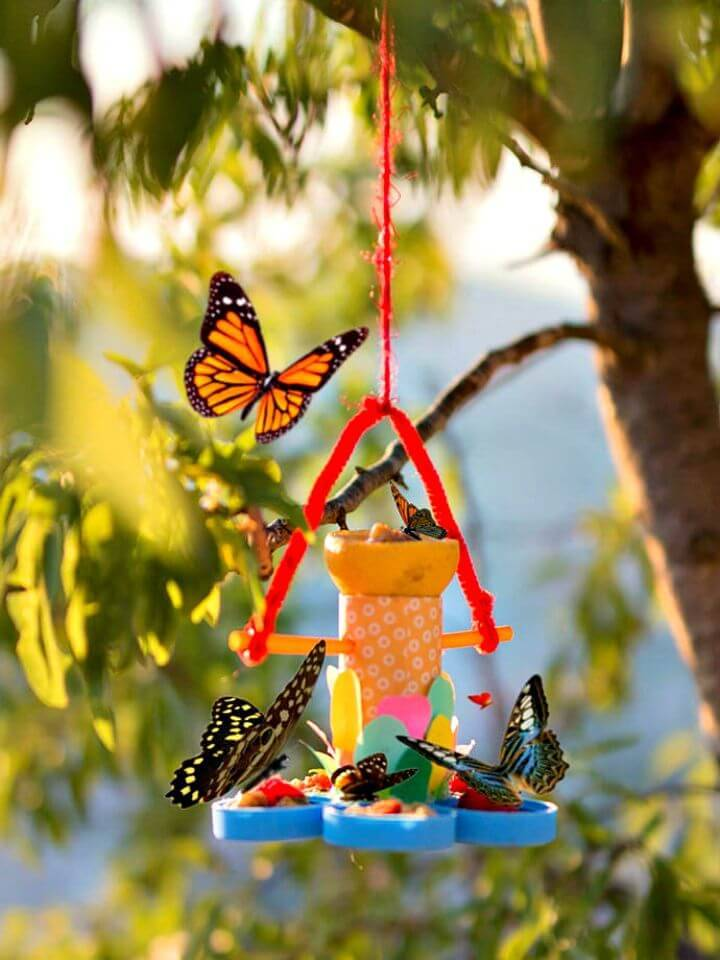 DIY Recycled Butterfly Feeder