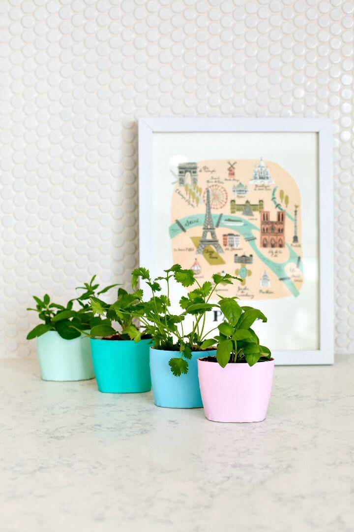 DIY Up-cycled Indoor Herb Garden