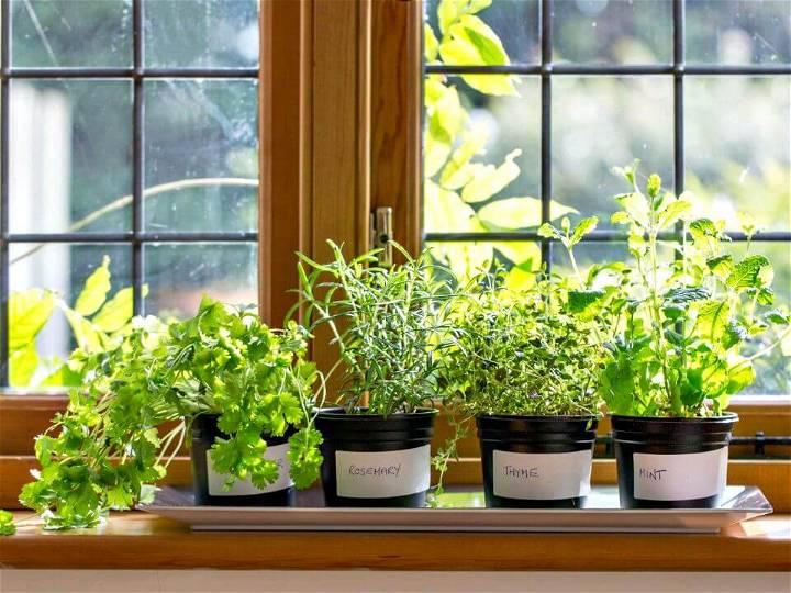 How to DIY Windowsill Herb Garden