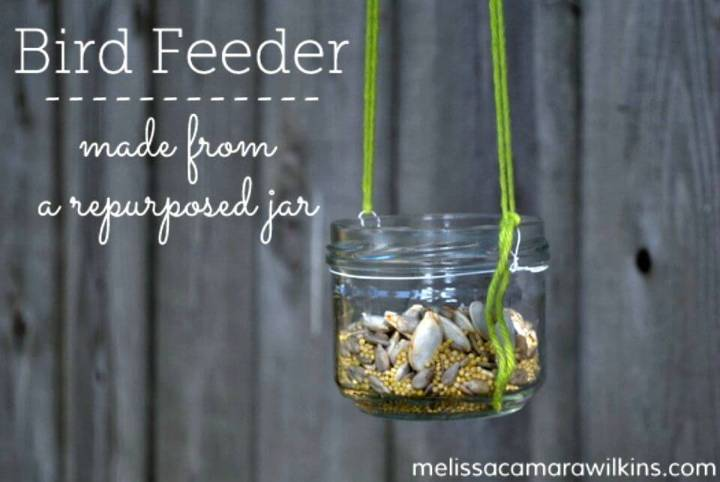Make a Butterfly Feeder