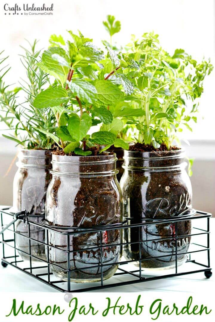 Awesome DIY Mason Jar Herb Garden for Indoor Greenery