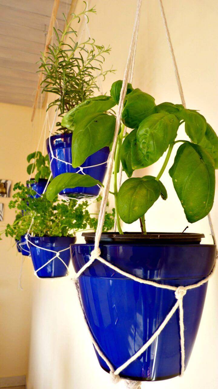 DIY Indoor Hanging Herb Garden