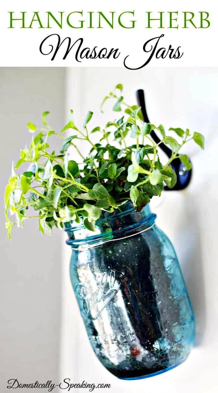 DIY Hanging Herb Mason Jars for Indoor Garden