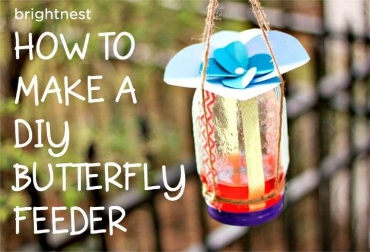 Adorable DIY Butterflies Feeder in 6 Simple Steps