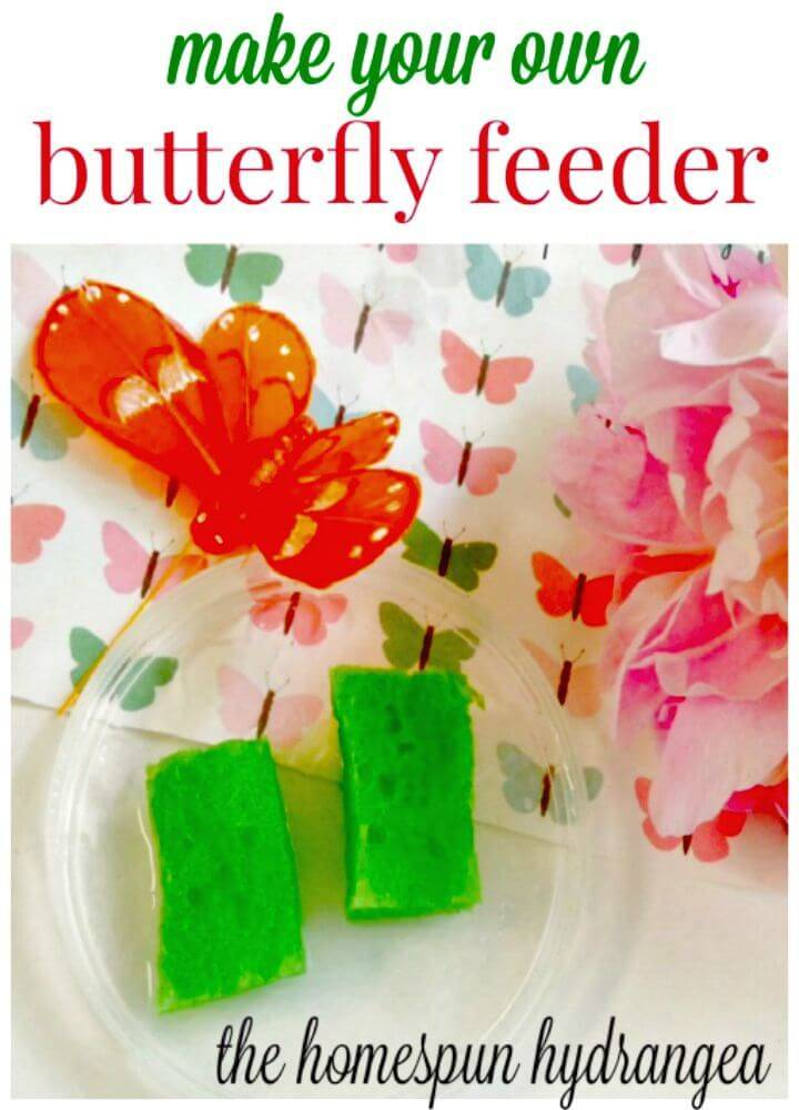 Easy DIY Butterfly Feeder Craft for Kids
